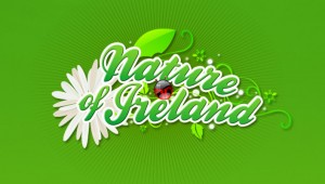 Nature of Ireland Identity Design