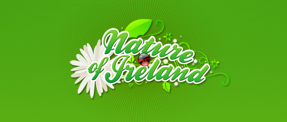 Nature of Ireland Identity Design