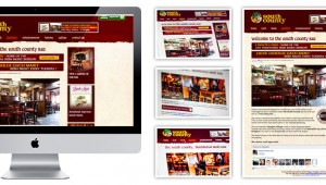 The South County Bar Website design