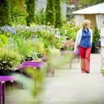 Pavilion Garden Centre Cork-4